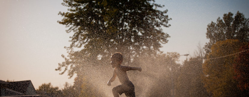 , Is This Houston Heat Destroying Your Yard? Read These Tips!, KW Woodlands